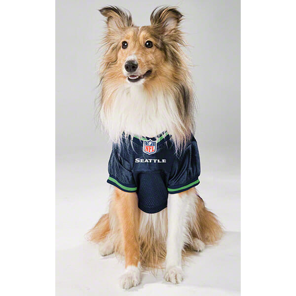 Seahawks fan gear for your pet